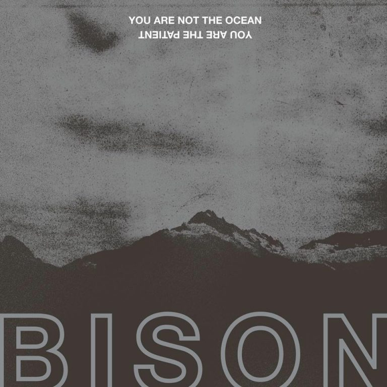 "Bison streamen ihr neues Album ""You Are Not The Ocean You Are The Patient"""