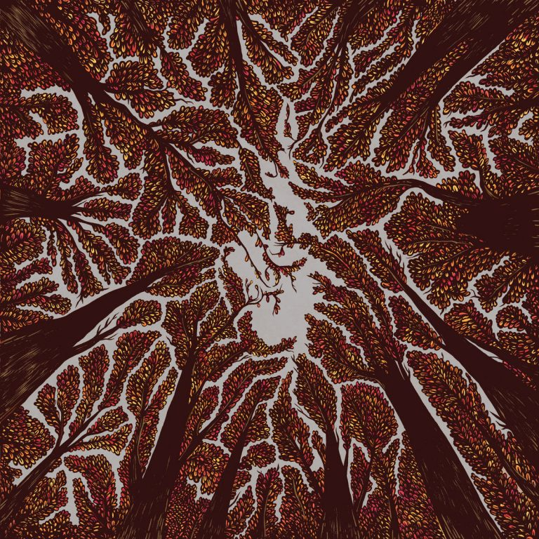 "Album-Release: Trash Boat ""Crown Shyness"""
